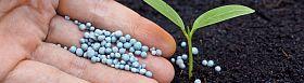 Fertilizing Services