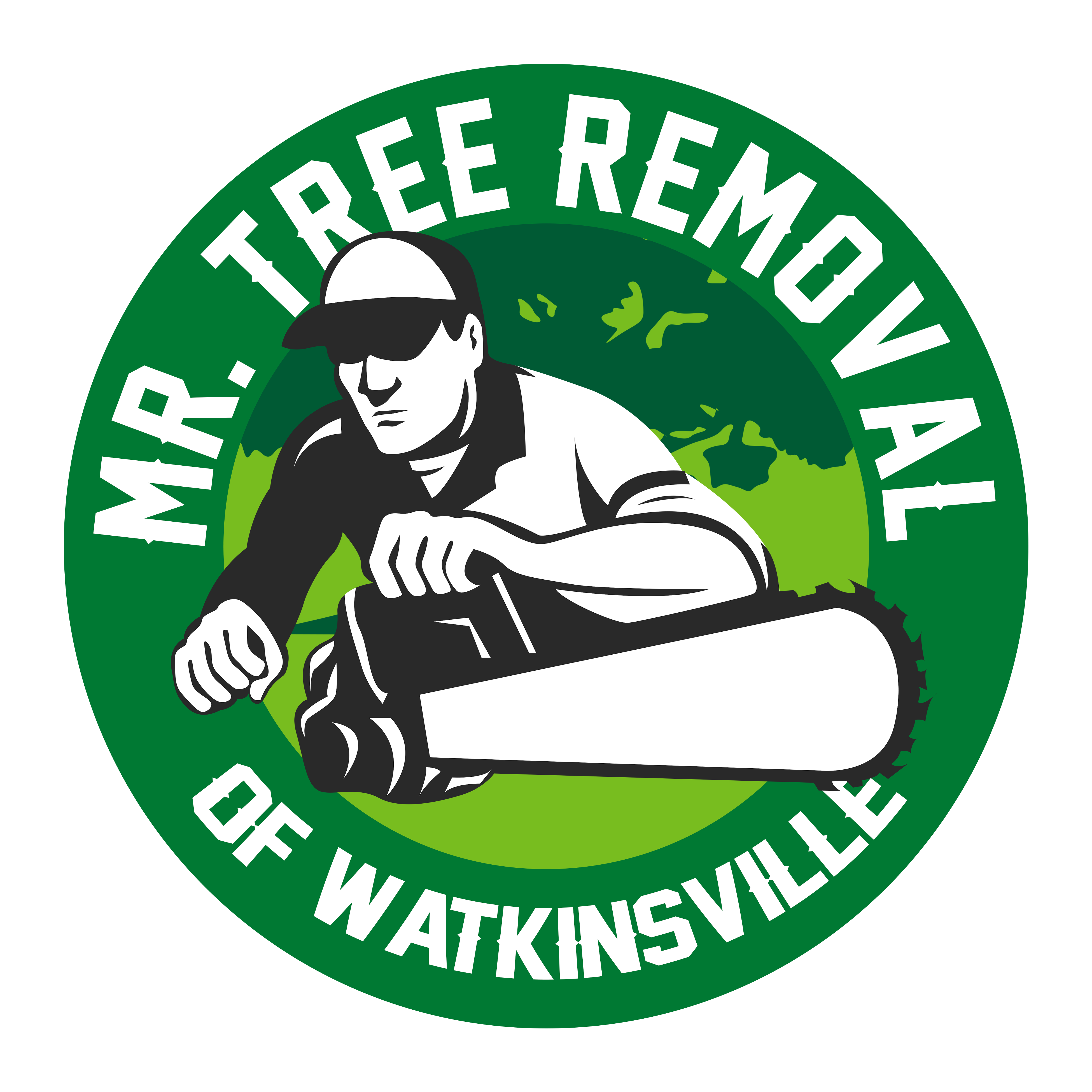 Mr Tree Removal of Watkinsville