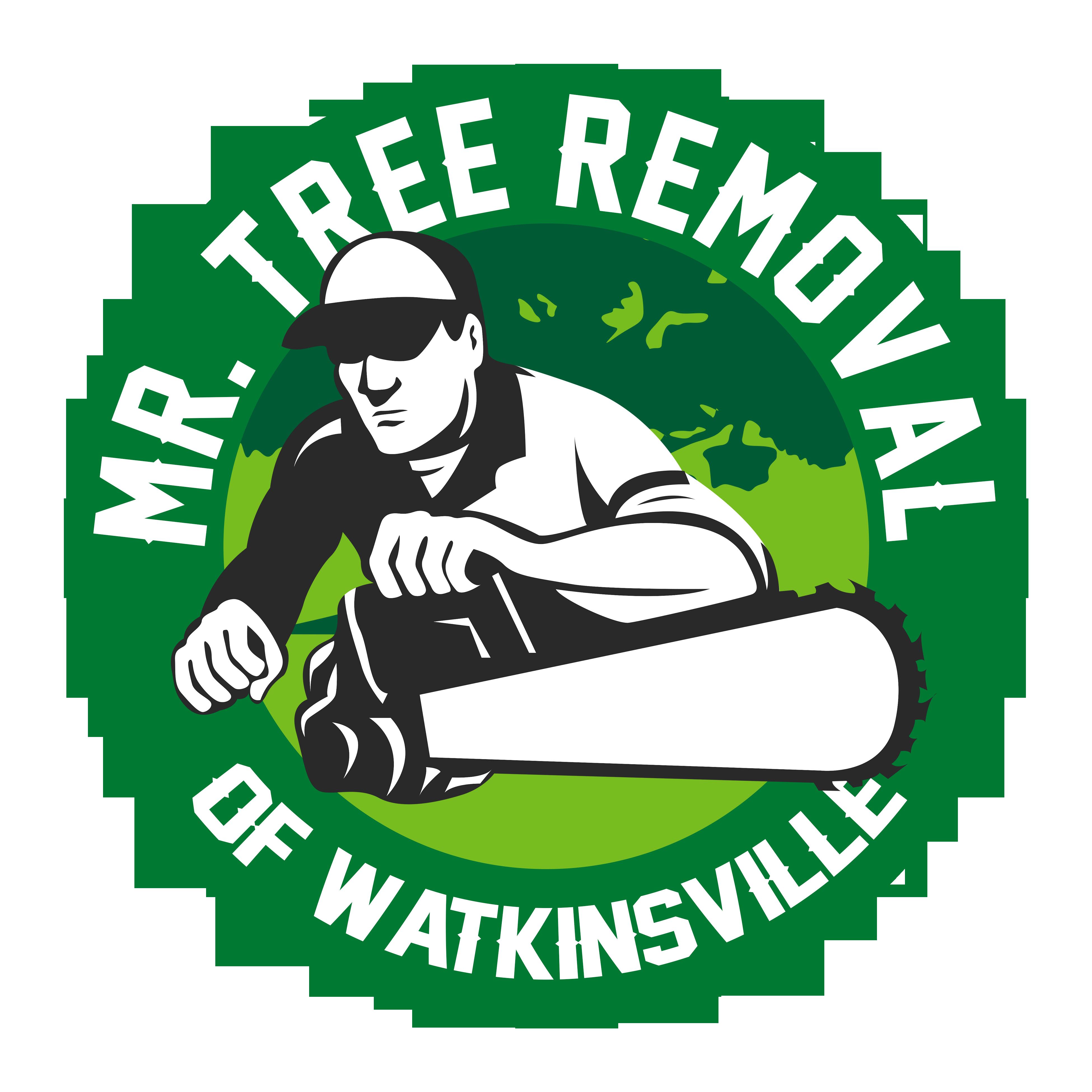 Mr Tree Removal of Watkinsville